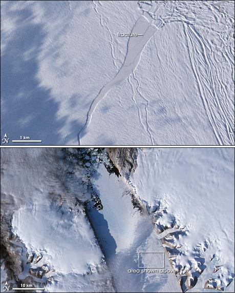Groenlandia se derrite, víctima del calentamiento del planeta   Noticias de ecologia y medio ambiente   ecologia   Scoop.it