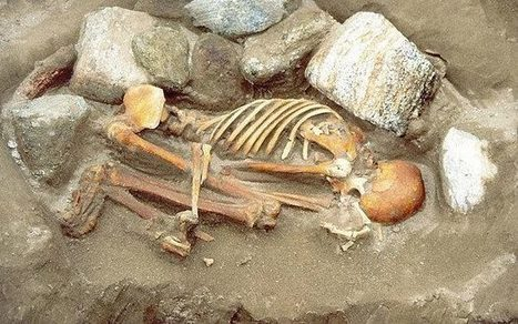 Half of Western European men descended from one Bronze Age 'king' | Aux origines | Scoop.it