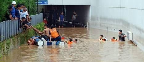 Hubert Reeves : le drame des réfugiés climatiques | Les enjeux du développement durable | Scoop.it