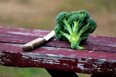 Where's the Beef? One Man's Journey From Burgers to Broccoli - | Sustainable Food Future | Scoop.it