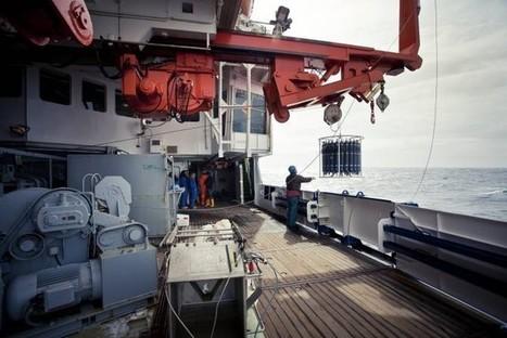 Calentamiento del agua profunda del Mar de Groenlandia 10 veces más rápido que el promedio marítimo mundial — Noticias de la Ciencia y la Tecnología (Amazings®  / NCYT®)   Medio Ambiente   Scoop.it