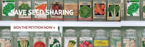 SELC and Shareable Kickoff Campaign to Save Seed Sharing in the U.S. | P2P Foundation | Peer2Politics | Scoop.it