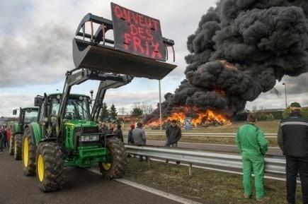 France : un an après, la crise agricole ne faiblit pas | Questions de développement ... | Scoop.it