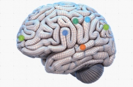 Neuroeducation: 25 Findings Over 25 Years - InformED | Psychology Update | Scoop.it