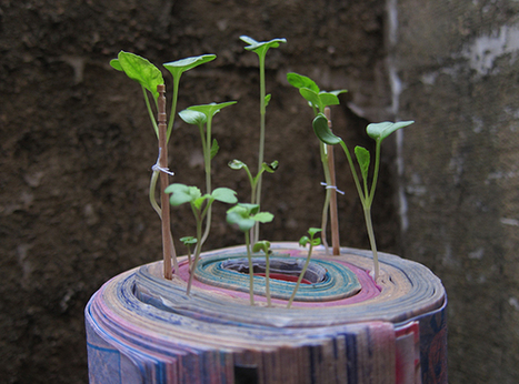 Japanese Artist Grows Gardens From Old Comic Books | Vertical Farm - Food Factory | Scoop.it