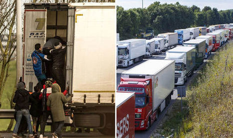 HGV drivers forced to pay £16m after illegal immigrants sneak on lorries | AS24 in UK | Scoop.it