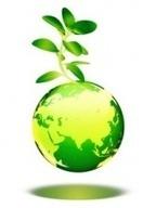 Statistiques mondiales écologiques | Français 4H | Scoop.it