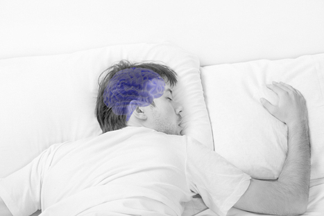 Sleep Flushes Toxins From the Brain - Discover Magazine Blogs | Technology and the brain | Scoop.it