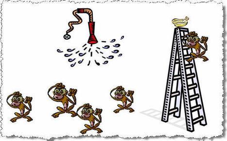 A méditer: la théorie du singe et la culture d'entreprise | créativité | Scoop.it