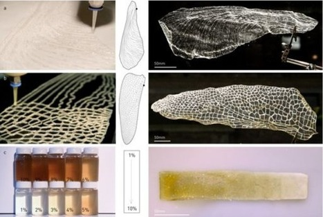 MIT Researchers Create Water-Based Robotic Fabrication Method for Natural Biodegradable 3D Printing | tecnext | Scoop.it