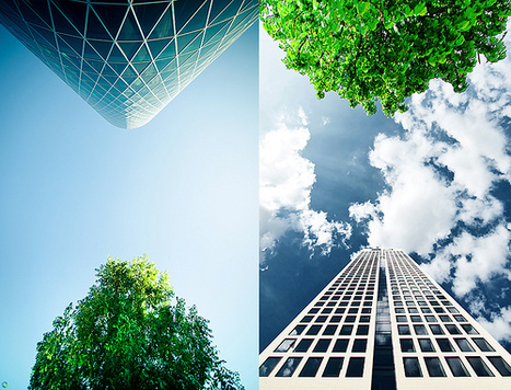 Cities Can't Combat Climate Change Alone | Sustainable Futures | Scoop.it