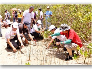 Multi-sector groups join forces to plant mangroves - The Philippine Star » Business Features » Agriculture | Vertical Farm - Food Factory | Scoop.it
