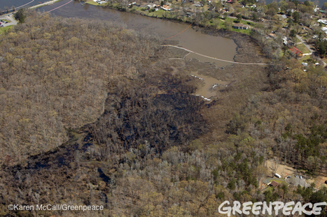 6 Things You Need to Know About the Arkansas Oil Spill | Sustain Our Earth | Scoop.it