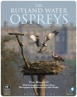 Osprey Webcam | HELPING ANIMALS IN DANGER by Oumnia | Scoop.it