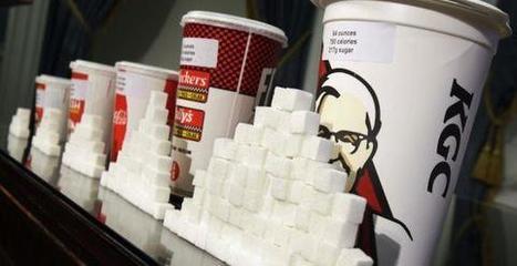 Coca-Cola refuse d'être le bouc-émissaire de l'obésité.  | agro-media.fr | Actualité de l'Industrie Agroalimentaire | agro-media.fr | Scoop.it