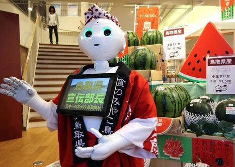 Drunk Man Arrested for Kicking Pepper Robot - Robotics Trends | Une nouvelle civilisation de Robots | Scoop.it