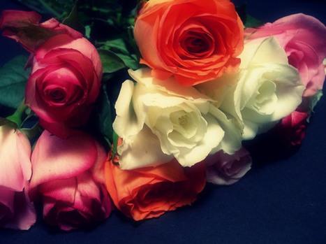Creative Valentines Day Art That Will Melt Your Hearts   PortPrep Blog   Valentines Day   Scoop.it