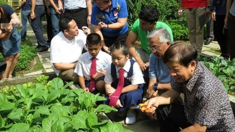 760kg of vegetables grown in community gardens, schools donated to those in need | Food issues | Scoop.it