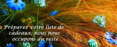 Paradis des savons - Articles - Plantes: Beauté et bien-être - Aloe vera – bienfaits sur la peau | aloes ou aloe vera | Scoop.it