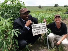 Maniema : le prix du riz baisse de 60% grâce au programme pour la réhabilitation de l'Agriculture | CONGOPOSITIF | Scoop.it