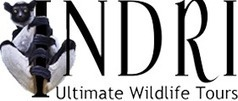 African Safari Holidays and Tours, Vacation Packages | INDRI Ultimate Wildlife Tours | Wildlife cruises | Scoop.it