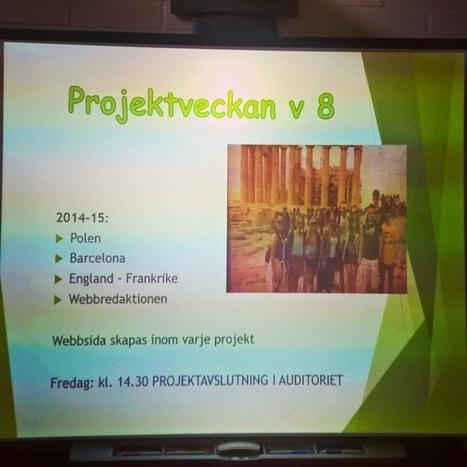 Nybloggat om projektveckan i Petalax ur lärarperspektiv. #petalaxprojekt | Digitalt lärande (#digiskola) | Scoop.it
