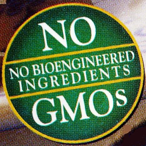Monsanto's Power Grab: Genetically Engineered Foods Given Immunity From the Federal Government | YOUR FOOD, YOUR ENVIRONMENT, YOUR HEALTH: #Biotech #GMOs #Pesticides #Chemicals #FactoryFarms #CAFOs #BigFood | Scoop.it