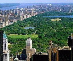 US urban trees store carbon, provide billions in economic value | Sustain Our Earth | Scoop.it