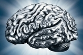 Buff Your Brain | Learning, Brain & Cognitive Fitness | Scoop.it