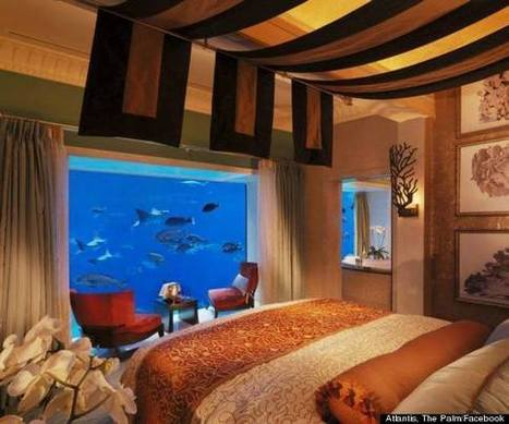 Incredible Hotel Suite Lets You Sleep Under The Sea | Xposed | Scoop.it