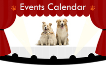 Puppy Health Care   Diseases, Symptoms, Treatment for Puppy Health   Dogs and Pups Magazine   Scoop.it