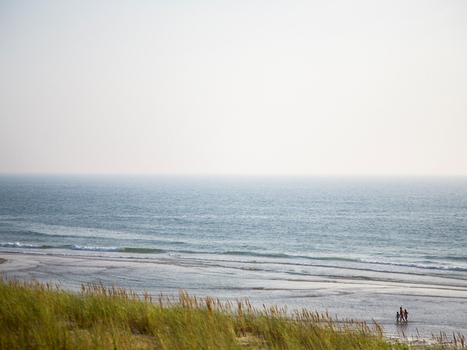 Coastal areas: a major environmental challenge | Sustainable Development Goals | Scoop.it