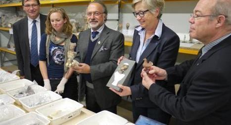 VENDEUIL-CAPLY Adoptez une figurine du musée! | Clic France | Scoop.it