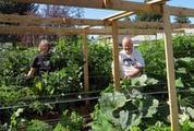 Straw-bale experiment a bountiful success - The Spokesman Review | Human Interest | Scoop.it