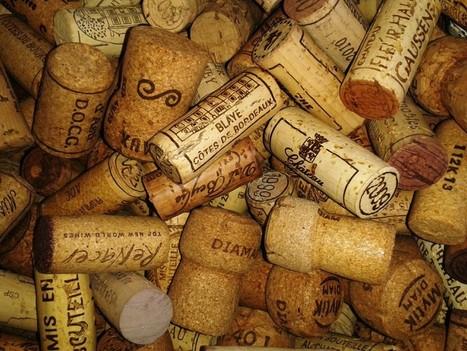 Lancement du 1er Vinithon durant Bordeaux Fête le Vin - France 3 | Oenotourisme en Entre-deux-Mers | Scoop.it