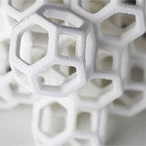 TEDx Talk by Sugar Lab Couple - 3D Printing Industry | 3D Printing | Scoop.it