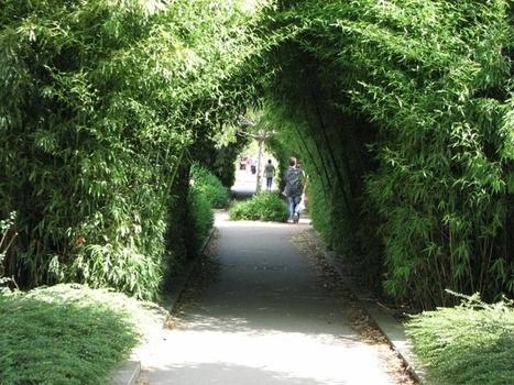 La coulée verte de Paris   ville et jardin   Scoop.it