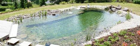 La piscine naturelle, entre avantages et inconvénients | Chronique d'un pays où il ne se passe rien... ou presque ! | Scoop.it