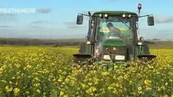 L'agriculture de conservation préserve les sols | Agriculture de Conservation des Sols | Scoop.it