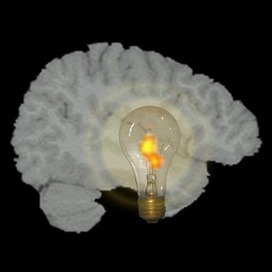 PLOS Biology: Neural Basis of Solving Problems with Insight | Social Neuroscience Advances | Scoop.it