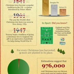 A Tree-mendous Christmas INFOGRAPHIC   Christmas Trees and More   Scoop.it