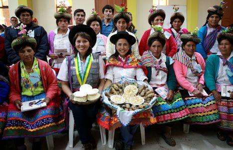 Fortalecen inclusión financiera en familias pobres de Vinchos, en ... - Andina   Inclusion Financiera en Latinoamerica   Scoop.it