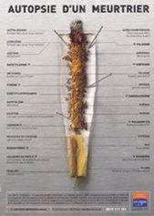 INPES - Tabac - Le produit : historique et composition | Le tabac : Ressources pour les collégiens | Scoop.it