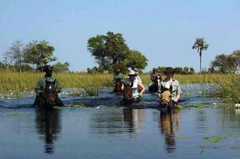 Vacanze Safari a cavallo in Sud Africa. | ViaggiSudAfrica | Scoop.it