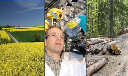 Energie biomasse | svt votre sujet mars 2013 llt | Scoop.it