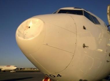 Ave pode ter colidido com avião chinês   Ciência e ufologia   Scoop.it