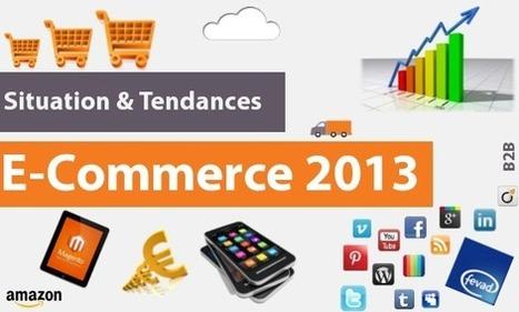» Situation et tendances e-commerce 2013 | Ecosystème Digital | Scoop.it