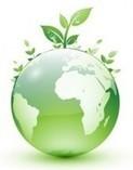 SOLUCIONES ECOLOGICAS | ANTECEDENTES | Scoop.it