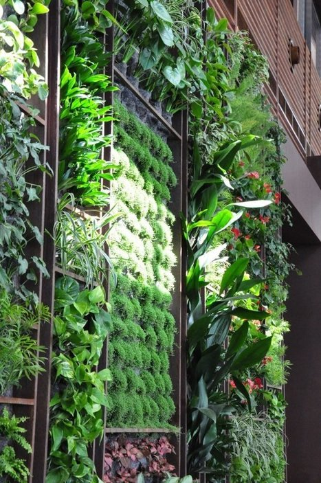 The green wall of the Sultan Ibrahim Restaurant in Maameltein // Lebanon by Green Studios | Jardines Verticales y azoteas verdes. | Scoop.it