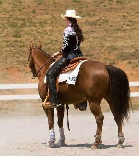 Creating Soft Hands For Better Horsemanship | western saddles | Scoop.it